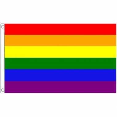 Vlag met regenboog print 90 x 150 cm