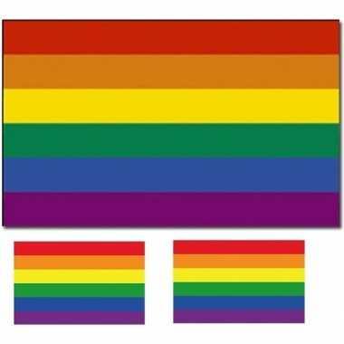 Vlag met regenboog print en twee gratis stickers