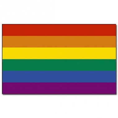 Vlag met regenboog print