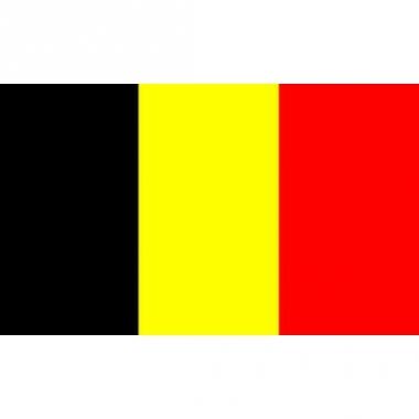 Vlag van belgie mini formaat 60 x 90 cm