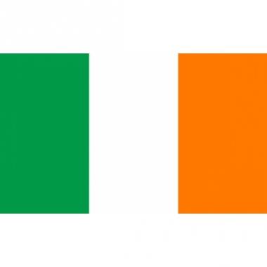 Vlag van ierland mini formaat 60 x 90 cm