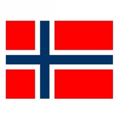 Vlag van noorwegen mini formaat 60 x 90 cm