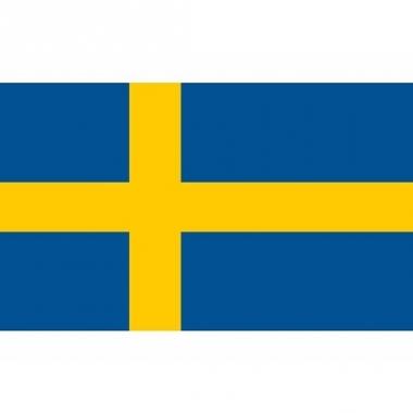 Vlag van zweden mini formaat 60 x 90 cm