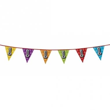 Vlaggenlijn 1 jaar feestje