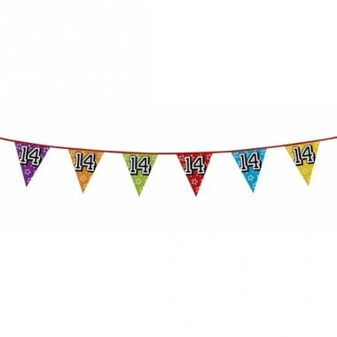 Vlaggenlijn 14 jaar feestje