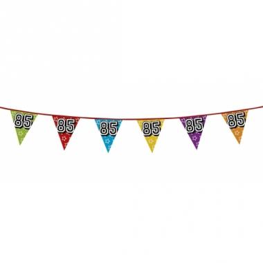 Vlaggenlijn 85 jaar feestje