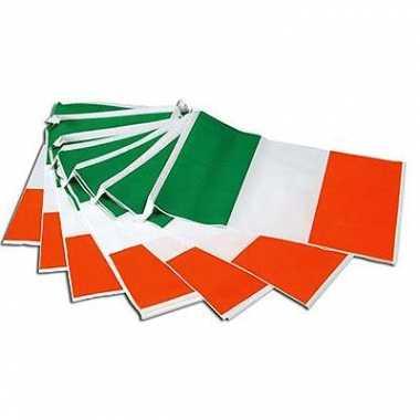 Vlaggenlijn ierse vlag 7 meter