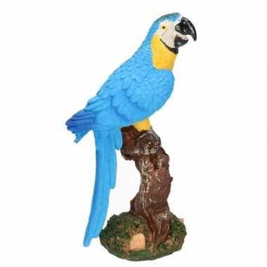 Vogel decoratie beeldje blauwe papegaai 26 cm