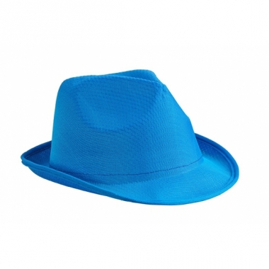 Voordelig hoedje blauw polyester