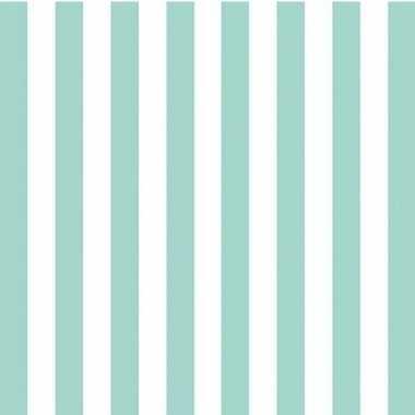 Wegwerp servetten blauw-wit gestreept 3-laags 20 stuks