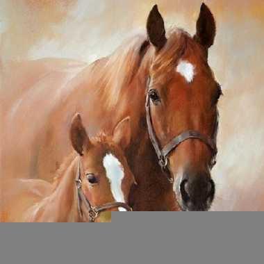 Wegwerp servetten paard met veulen 3-laags 20 stuks