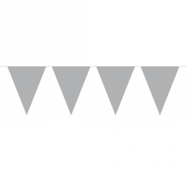 Zilveren vlaggenlijn groot 6 meter