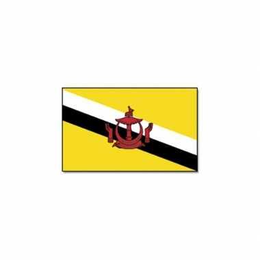Zuidoost aziatische vlag brunei
