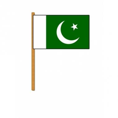 Zwaaivlaggetje van pakistan