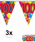 100 jaar vlaggenlijnen 3x met gratis sticker