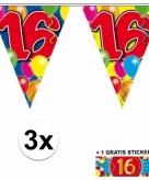16 jaar vlaggenlijnen 3x met gratis sticker