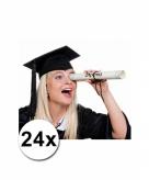 24 luxe afstudeer geslaagd hoedjes