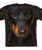 All over print t-shirt met pincher hond