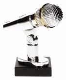Beste zanger zangeres award 15 cm