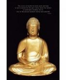 Boeddha beeld maxi poster 61 x 91 cm