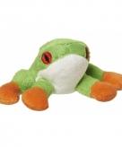 Boomkikker knuffel 10 cm