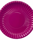 Bordeaux wegwerp borden 29 cm