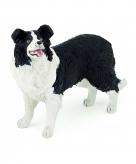 Border collie hond plastic