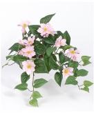 Bosje nep clematis roze 60 cm