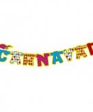Carnaval letterslingers 160 cm