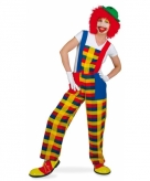 Clown verkleedkostuum tuinbroek