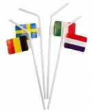 Europa thema rietjes 10 stuks