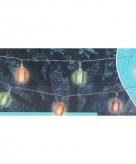 Feestlampjes voor buiten lampionnen 365 cm