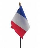 Frankrijk vlaggetje polyester