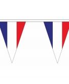 Franse vlaggenlijn van stof 20 m