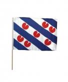 Friese zwaaivlaggen 50 x 70 cm