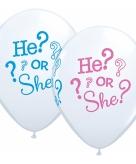 Geboorte ballonnen he or she 25 stuks