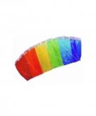 Gekleurde matras vlieger 160 x 60 cm