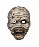 Halloween mummie masker 21 x 29 cm