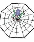 Halloween spinnenweb met spin 29 x 29 cm