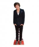 Harry styles mega bord