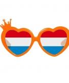 Hartvormige oranje bril
