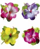 Hawaii haarklem met grote bloem gekleurd