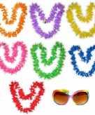 Hawaiikransen pakket gekleurd 7 personen