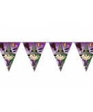 Heksen vlaggenlijntjes 6 meter