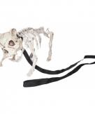 Honden skeletje 42 x 20 x h19 cm