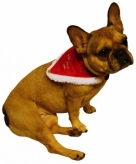 Huisdier kerst halsband