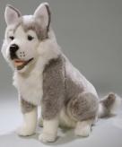 Husky hond knuffeldier 37 cm
