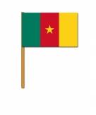 Kameroen zwaaivlaggetjes