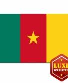 Kameroense vlaggen goede kwaliteit