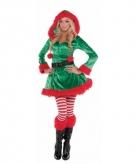 Kerstelf verkleedjurkje voor vrouwen